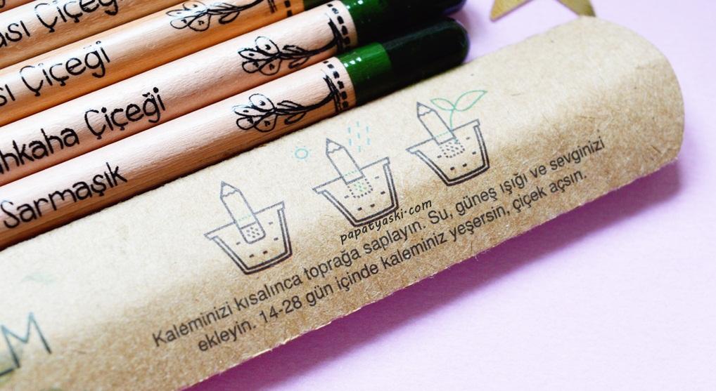 cicek-acan-kalemler